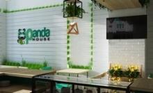 Дизайн кафе Panda